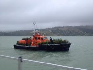 Quail Island (2)